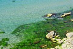 Mar colorido Fotos de Stock