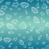Mar con el fondo de las cáscaras del mar para el diseño del verano Imagen de archivo libre de regalías