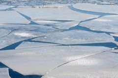 Mar congelado com floes de gelo grandes Imagem de Stock Royalty Free