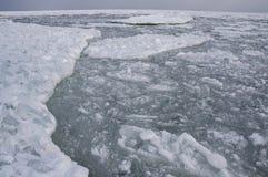 Mar congelado no golfo da banquisa de gelo de flutuação de Odessa Black Sea Imagem de Stock Royalty Free