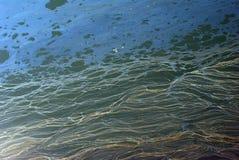Mar contaminado Fotografia de Stock