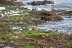 Mar-costa Fotografia de Stock