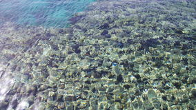 Mar Crystal Clear Blue Water Background video estoque