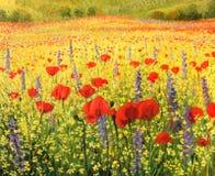 Mar da flor Imagens de Stock Royalty Free