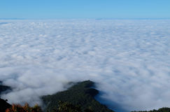 Mar da névoa com a montanha no parque nacional Chiangmai, Tailândia Imagens de Stock Royalty Free