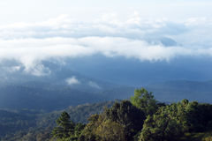 Mar da paisagem da névoa nas montanhas fotos de stock