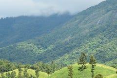 Mar da paisagem da névoa nas montanhas imagens de stock royalty free