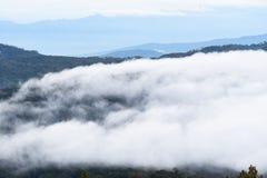 Mar da paisagem da névoa nas montanhas imagem de stock
