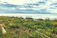 Mar da paisagem no tempo nebuloso Fotos de Stock Royalty Free
