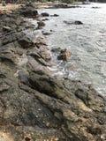 mar da vista Imagens de Stock