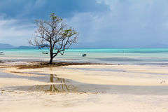 Mar da vista. Foto de Stock Royalty Free