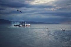 Mar das caraíbas do barco e das gaivotas fotografia de stock