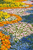 Mar das flores Imagens de Stock Royalty Free