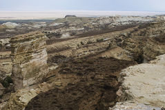 Mar de 10 Aral, platô de Usturt imagens de stock