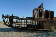 Mar de Aral Foto de archivo libre de regalías