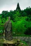 Mar de bambú hermoso Imagen de archivo