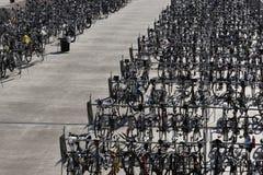 Mar de bicicletas ante raza de la bici en Madison Wisconsin Foto de archivo libre de regalías