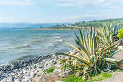 Mar de galilee Imagem de Stock Royalty Free