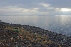 Mar de Galilee cedo em uma manhã nebulosa Imagem de Stock Royalty Free