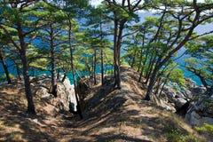 Mar de Japón. Otoño. 2 fotos de archivo