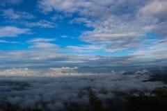 Mar de la niebla en Tailandia Imágenes de archivo libres de regalías