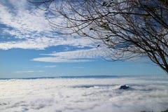 Mar de la niebla y de la puesta del sol en la montaña Foto de archivo libre de regalías