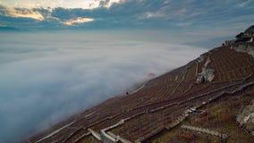 Mar de la nube en viñedo del rieviera del lavaux almacen de metraje de vídeo