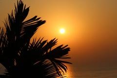 Mar de oro en la madrugada Foto de archivo libre de regalías