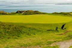 Mar de putting green del campo de golf en fondo y la bolsa de golf Fotos de archivo libres de regalías