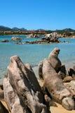 Mar de Sardinia imagens de stock royalty free