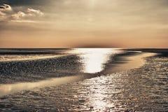 Mar de Wadden Fotografia de Stock Royalty Free