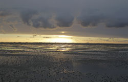 Mar de Wadden Imagem de Stock Royalty Free