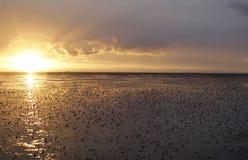 Mar de Wadden Fotografia de Stock