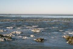 Mar de Wadden del parque nacional del invierno Imagen de archivo