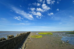 Mar de Wadden en Moddergat, los Países Bajos Imagen de archivo libre de regalías