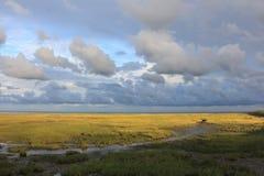 Mar de Wadden pela maré baixa Fotografia de Stock Royalty Free