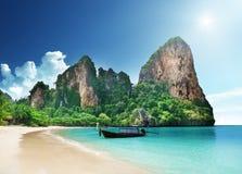 Mar dei Caraibi e palme Fotografia Stock