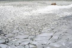 Mar del hielo Fotos de archivo