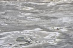 Mar del hielo foto de archivo