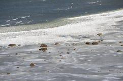 Mar del invierno fotos de archivo
