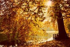 Mar del otoño Imágenes de archivo libres de regalías