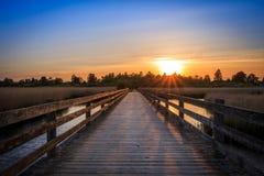 Mar do cruzamento da ponte no por do sol Fotografia de Stock Royalty Free