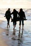 Mar do inverno Imagens de Stock