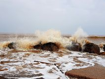 Mar do Norte Inglaterra Imagens de Stock Royalty Free