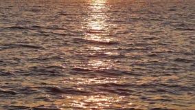 Mar do por do sol video estoque