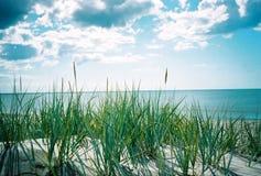 Mar do verão. Uma vista do sandhill imagens de stock