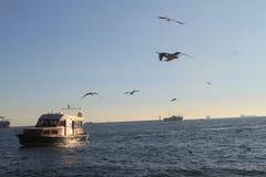 Mar e barco Imagem de Stock Royalty Free