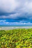 Mar e céu Imagens de Stock Royalty Free