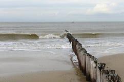 Mar e costa holandeses Fotos de Stock Royalty Free