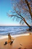 Mar e invierno imagen de archivo libre de regalías